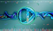个体化医疗第一步: 从分子水平分型癌症