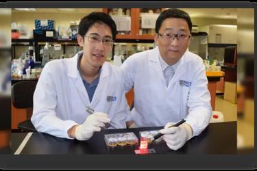 用于肿瘤PDT的可植入微型无线射频光源